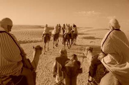 Foresight of Bedouin